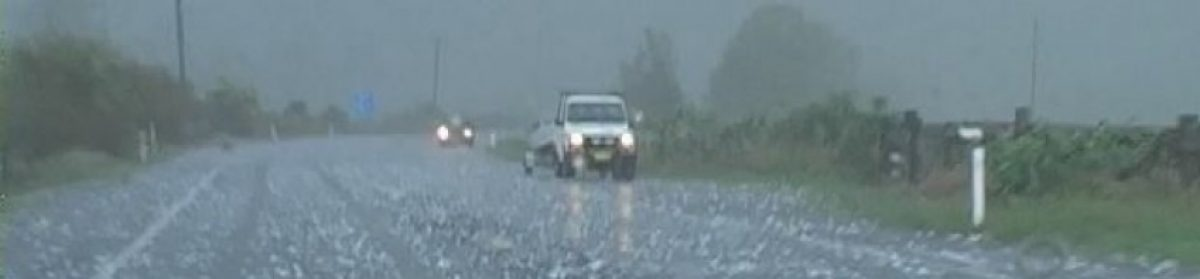 Hailstorm Forecasts